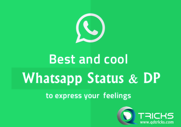 50 Whatsapp Dp Quotes Status