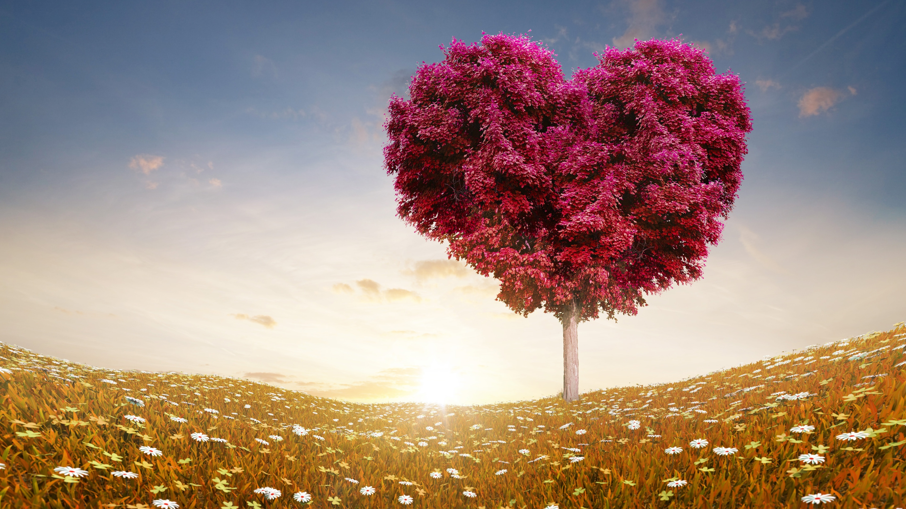 Love Heart Tree Images